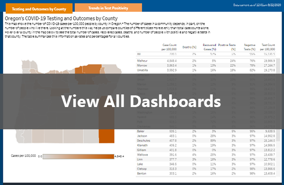 View Data Dashboards